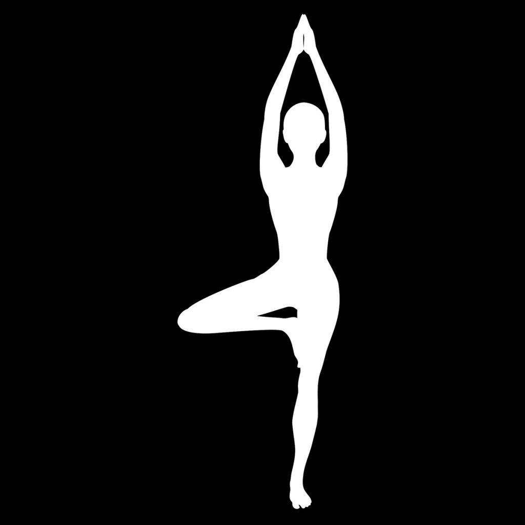 Hatha Yoga (Black Label)